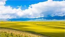 现代农业产业园七大流行商业主题