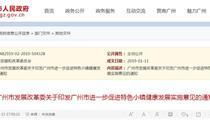 广州市特色小镇健康发展实施意见