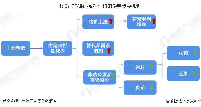 图3:非洲猪瘟对豆粕的影响传导机制
