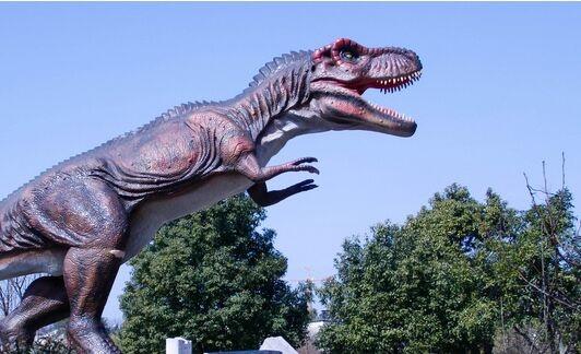 承德惊现恐龙足迹