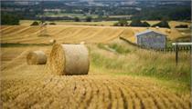 如何看待国外田园综合体的发展形式?