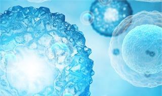 室外细菌或会将耐抗生素基因传递给室内细菌 从而对抗生素产生免疫力