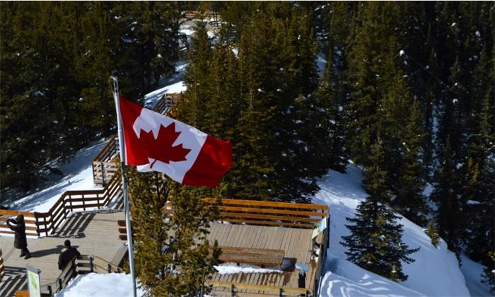 """哈里欲定居加拿大 费用竟要加拿大人""""买单""""?"""