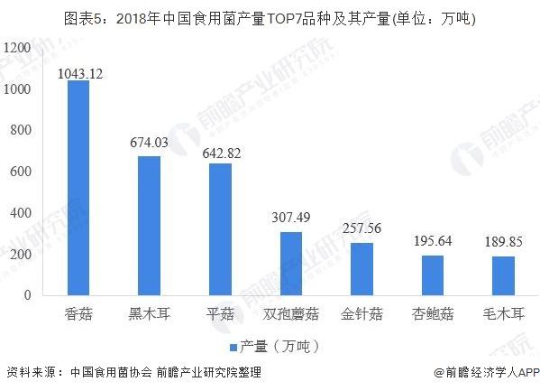 图表5:2018年中国食用菌产量TOP7品种及其产量(单位:万吨)