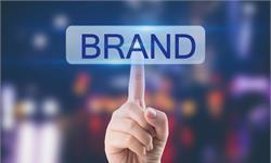 2020年,品牌延伸驱动业务增长