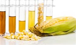 2019年中国棕榈油行业市场现状及发展趋势分析