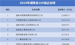 2019年湖南省100强企业排行榜