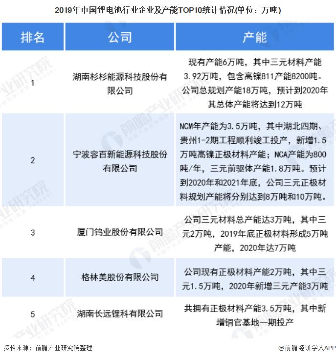 2019年中国锂电池行业企业及产能TOP10统计情况(单位:万吨)