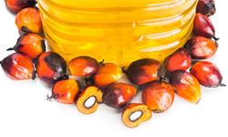 2019年中国<em>棕榈油</em>行业市场现状及发展前景分析 预计2024年市场消费量将超700万吨