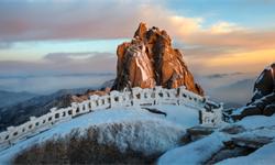 2020年中国冰雪旅游行业市场现状及发展前景分析