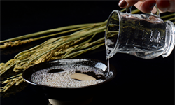 2020年中國(guo)白酒行業(ye)市場現狀(zhuang)及發展前景分析(xi)