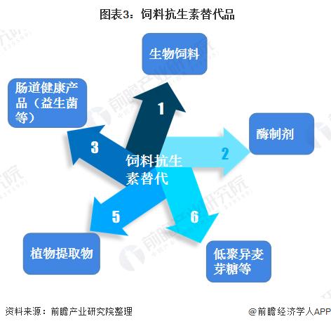 图表3:饲料抗生素替代品