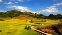 河南<em>现代农业</em><em>产业园</em>申报开始 每个补助1000万元