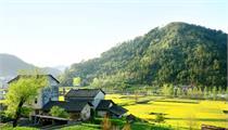 乡村旅游当前发展路径分析