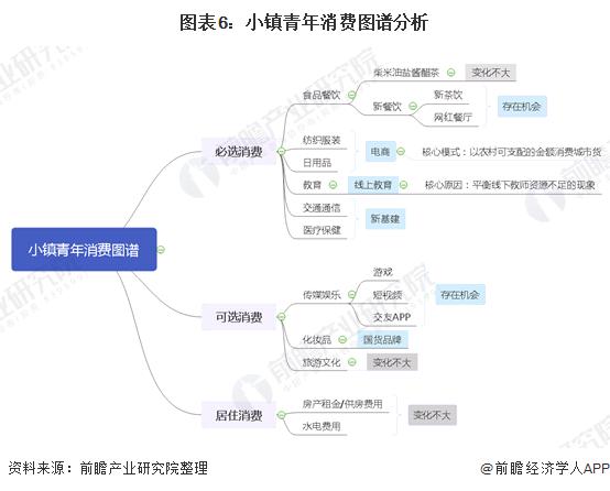 图表6:小镇青年消费图谱分析