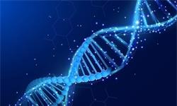 2019年中国基因<em>测</em><em>序</em>行业市场分析:全年市场规模接近150亿 技术研发是发展关键