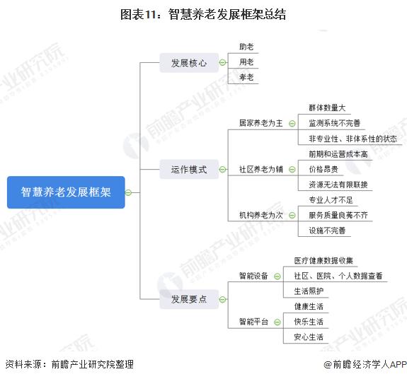 图表11:智慧养老发展框架总结