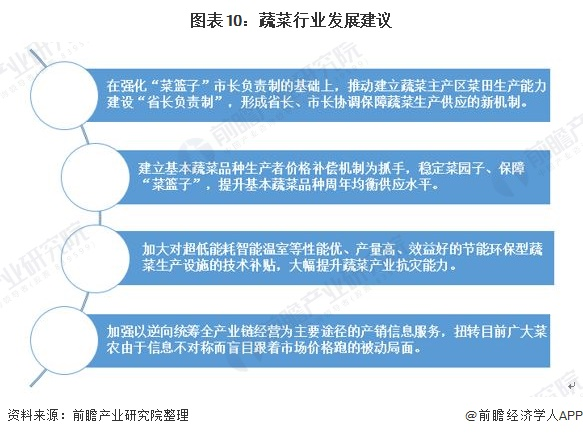 图表10:蔬菜行业发展建议