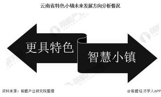 云南省特色小镇未来发展方向分析情况