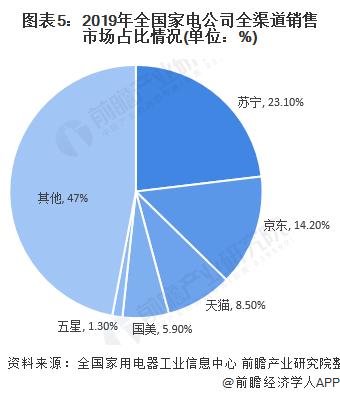 图表5:2019年全国家电公司全渠道销售市场占比情况(单位:%)