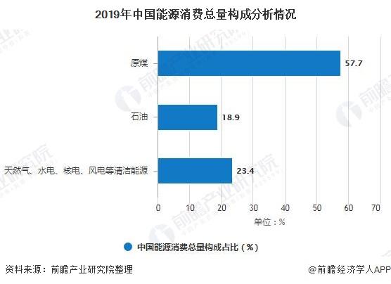 2019年中国能源消费总量构成分析情况