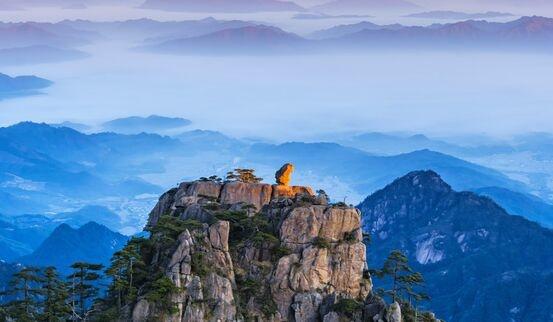 黄山景区停摆一天损失450万 一季度进山游客人数同比下降81.15%