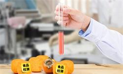 2020年中国食品安全检测行业市场现状及发展趋势 未来网红食品检测将带来新增长点
