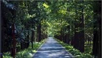 国家林业产业示范园区认定命名办法