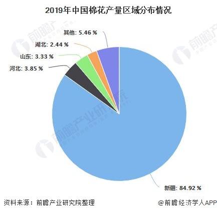 2019年中国棉花产量区域分布情况