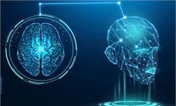 """大脑""""更新机制""""可能会产生错误记忆 或影响证人证词的准确性"""