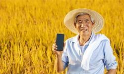 2020年中国农村电商行业发展现状分析 利好政策助力提高行业发展水平