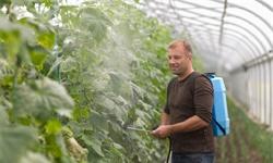 2020年中国<em>农药</em>行业市场现状及发展趋势分析 高效低毒<em>农药</em>将成为未来发展方向