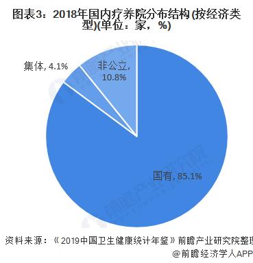 图表3:2018年国内疗养院分布结构(按经济类型)(单位:家,%)