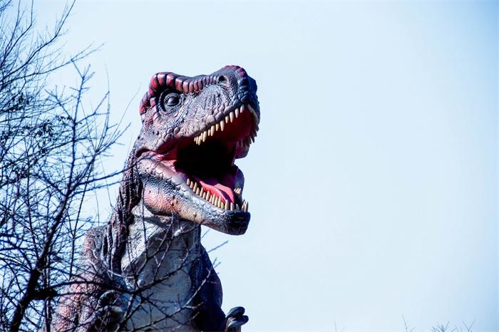 """罕见!重庆发现大型肉食恐龙出没证据 1.9亿年前在石英砂岩表面留下""""小跑""""足迹"""