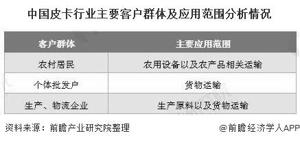 中国皮卡行业主要客户群体及应用范围分析情况
