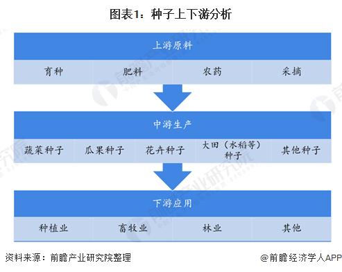 图表1:种子上下游分析