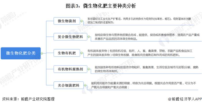 图表3:微生物化肥主要种类分析
