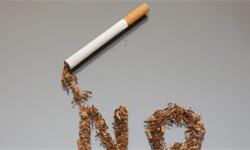 2020年中国烟草行业市场分析:前4月<em>卷烟</em>产量突破9000亿支 进出口贸易逆差扩大