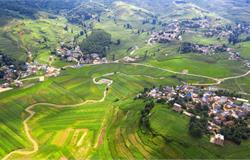 广东公布2020年首批现代农业产业园建设名单