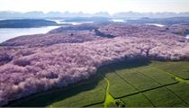 浙江省第二批农村产业融合发展示范园创建名单