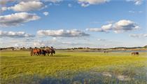 内蒙古自治区2020年现代农牧业产业园创建名单