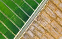 瓦房店市现代农业产业园入选国家创建名单