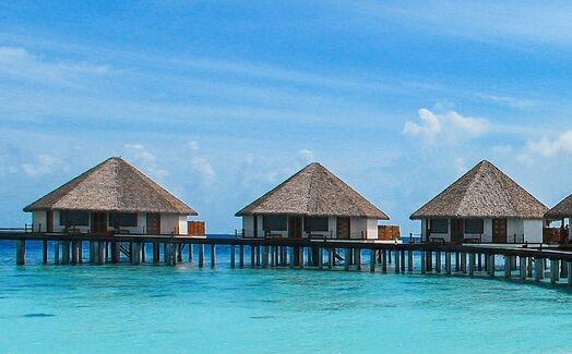马尔代夫将向国际旅客开放 从8月1日起正式开放民宿和酒店