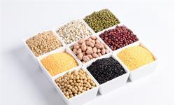 延年益壽!多項研究表明:多攝入植物蛋白,心血管疾病風險和死亡率明顯降低