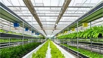 宁夏72个州级现代农业产业园名单公示