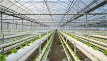 河南省启动绿色产业示范基地申报建设