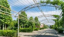 2020现代农业产业园规划设计要点