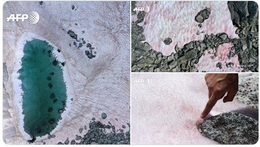 阿尔卑斯山现粉红色冰川