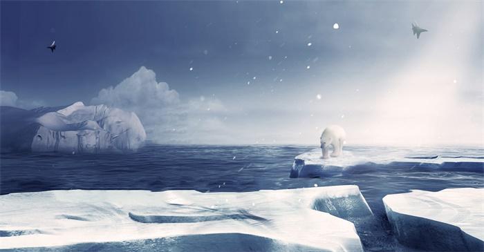 """引发担忧!高浓度""""永久""""化学物质融化流入北冰洋,难以分解且对动物有毒"""