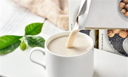 2020年美国植物蛋白食品行业发展现状分析 植物奶与人造肉市场规模不断扩大
